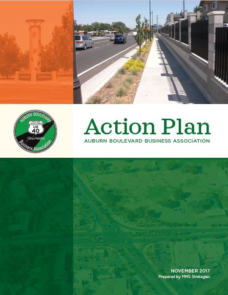 Action-Plan-2017-Front-Page