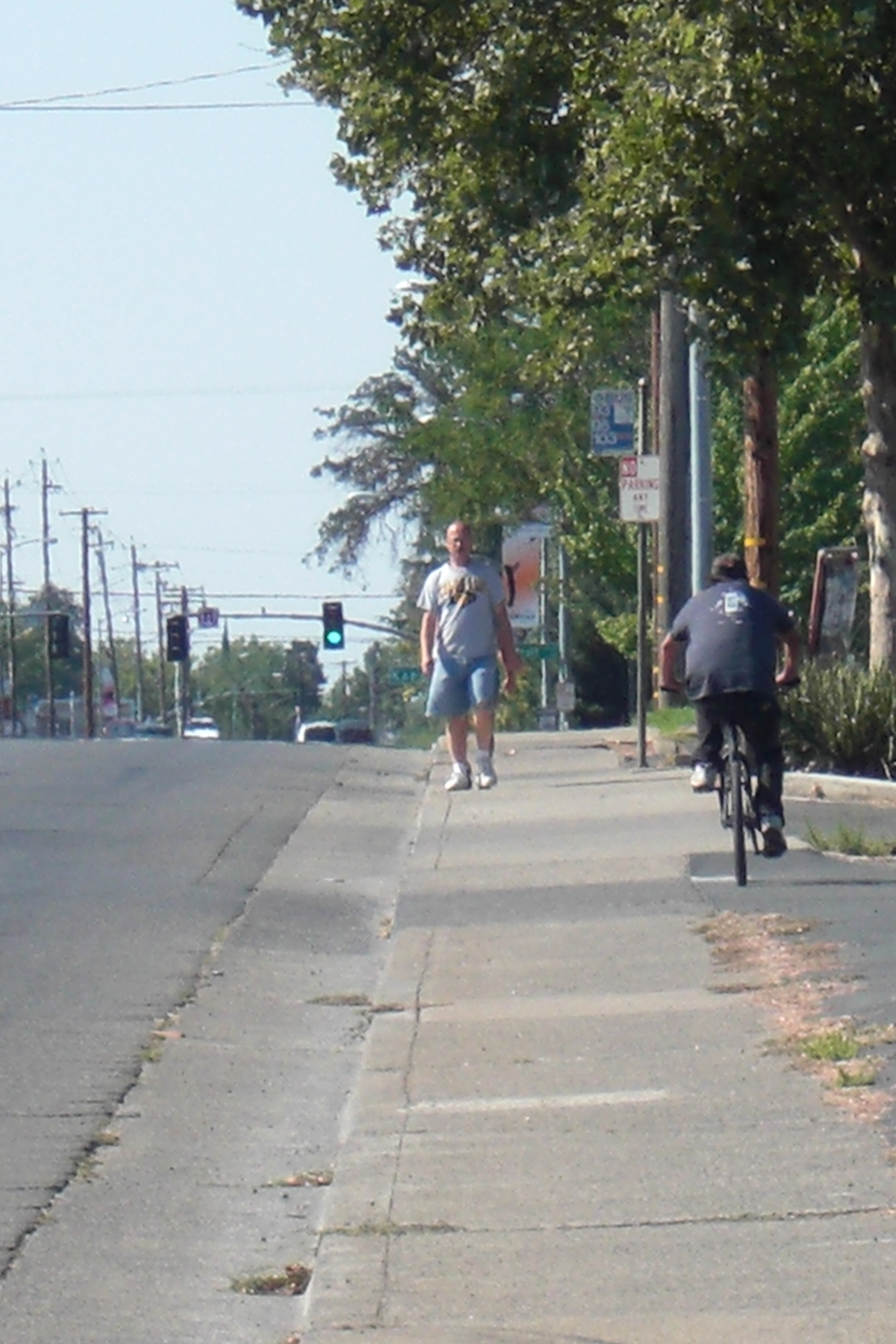 Pedestrian and Bike Conflict