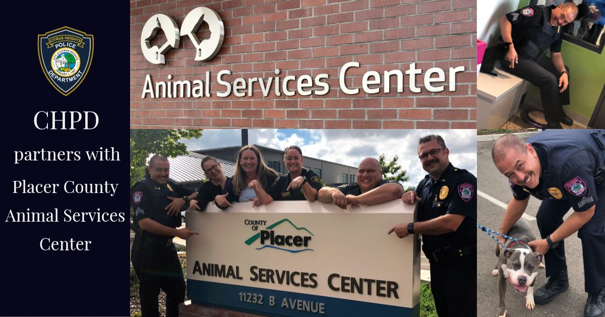 CHPD partners with Placer County Animal Services Center